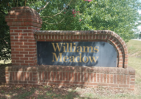 Williams Meadow