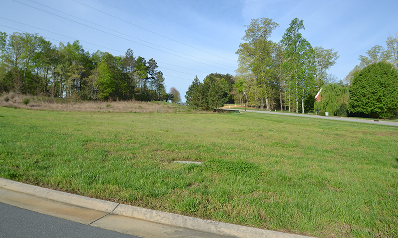 Hubbard-Commercial_Meadowlands-Forest-Park_Lot-448