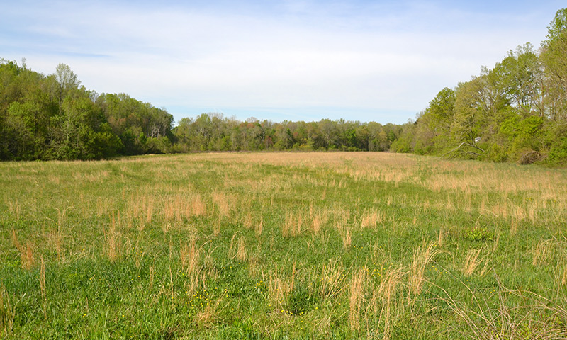 Hubbard-Commercial_Meadowlands_0475_Land_19-04